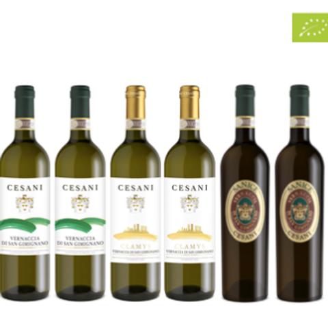 """6 bottiglie - Cassa mista Cesani:""""LE SFUMATURE DELLA VERNACCIA DI SAN G"""