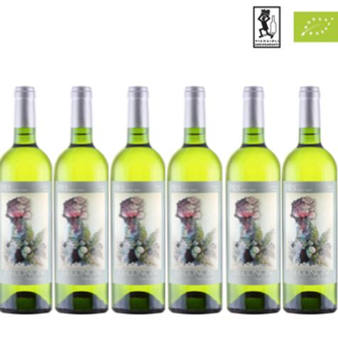 6 bottiglie - Toscana Bianco PRS 2019 - Pietro Beconcini