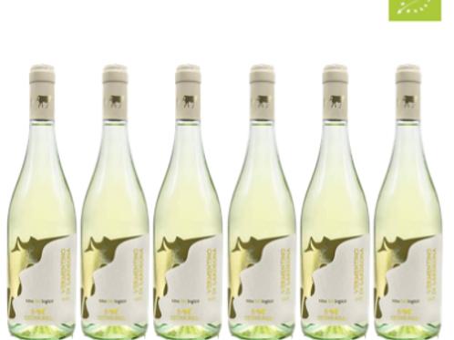 6 bottiglie - Vermentino di Sardegna 2018 - Fattorie Isola