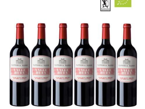 6 bottiglie -  Colline Lucchesi Rosso VALLEBUIA 2020 - Fattoria Sardi