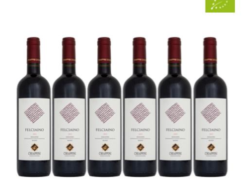 6 bottiglie - Bolgheri Rosso FELCIAINO 2019 - Chiappini