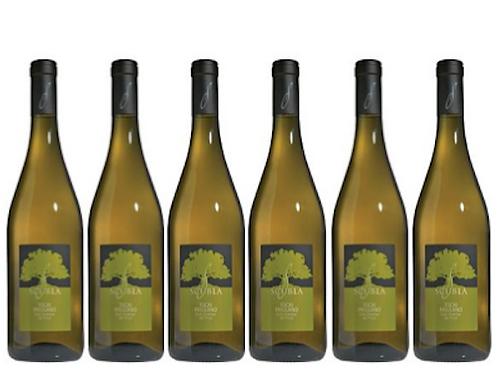 6 bottiglie - Friuli Colli Orientali Friulano 2019 - Scubla