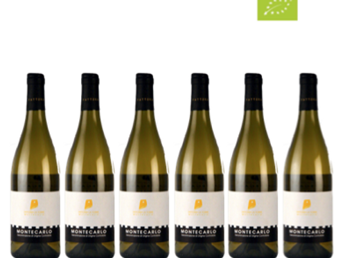 6 bottiglie - Montecarlo Vermentino Biologico 2020 - Fattoria La Torre