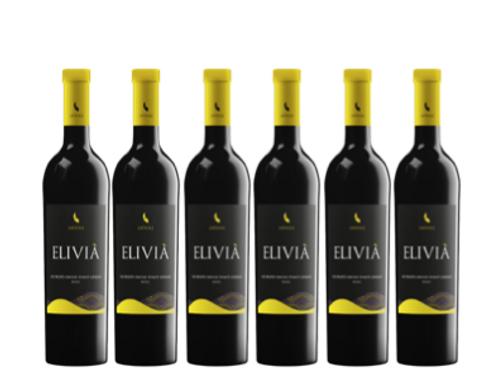 6 bottiglie - Oltrepò Pavese Pinot Grigio ELIVIA' 2018 - Lefiole