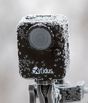 Afidus-Cold-Frost.jpg