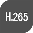 H.265_3x.png