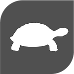 Turtle@3x.png