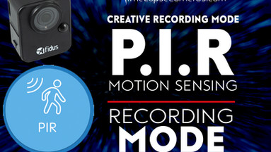 A Motion Sensing Camera? PIR recording Mode, Afidus Time Lapse Camera