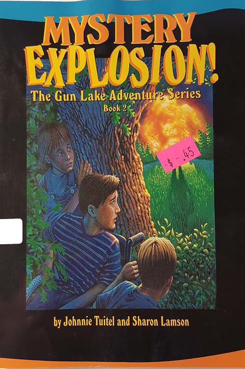 Mystery Explosion
