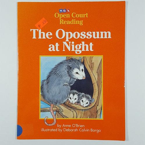 The Opossum at Night