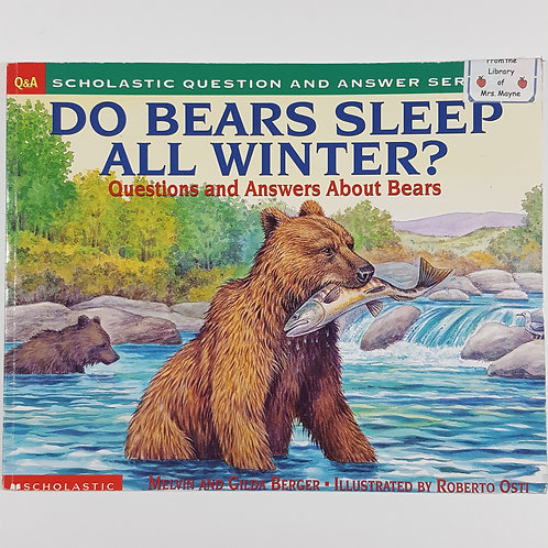 Do Bears Sleep All Winter?