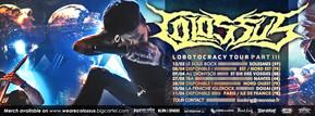 Colossus Bandeau tour 2016 (4) copie.jpg