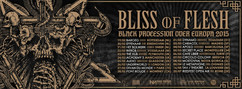 Bliss Bandeau Europe 2015 copie.jpg