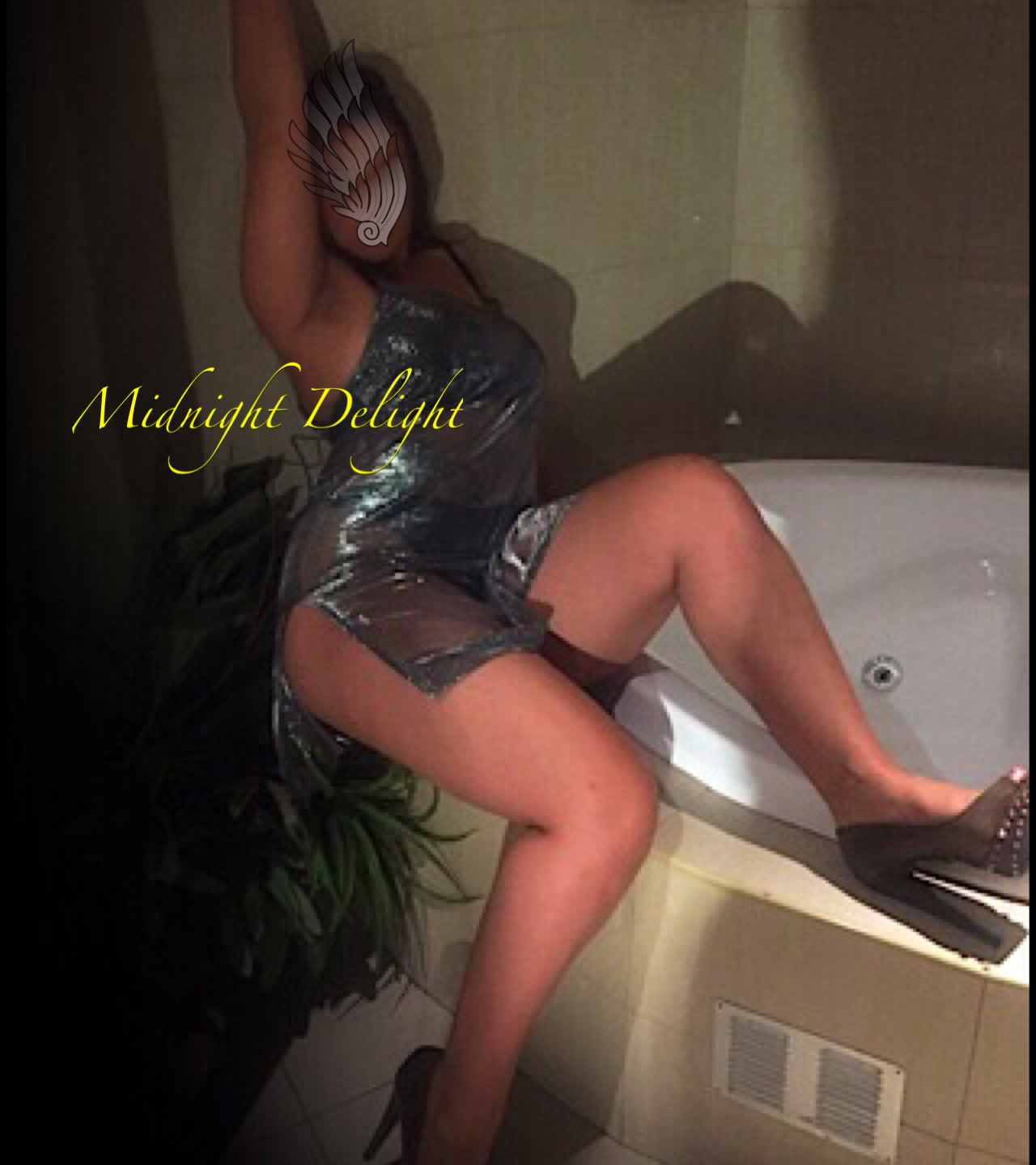 Midnight Delight- AVA