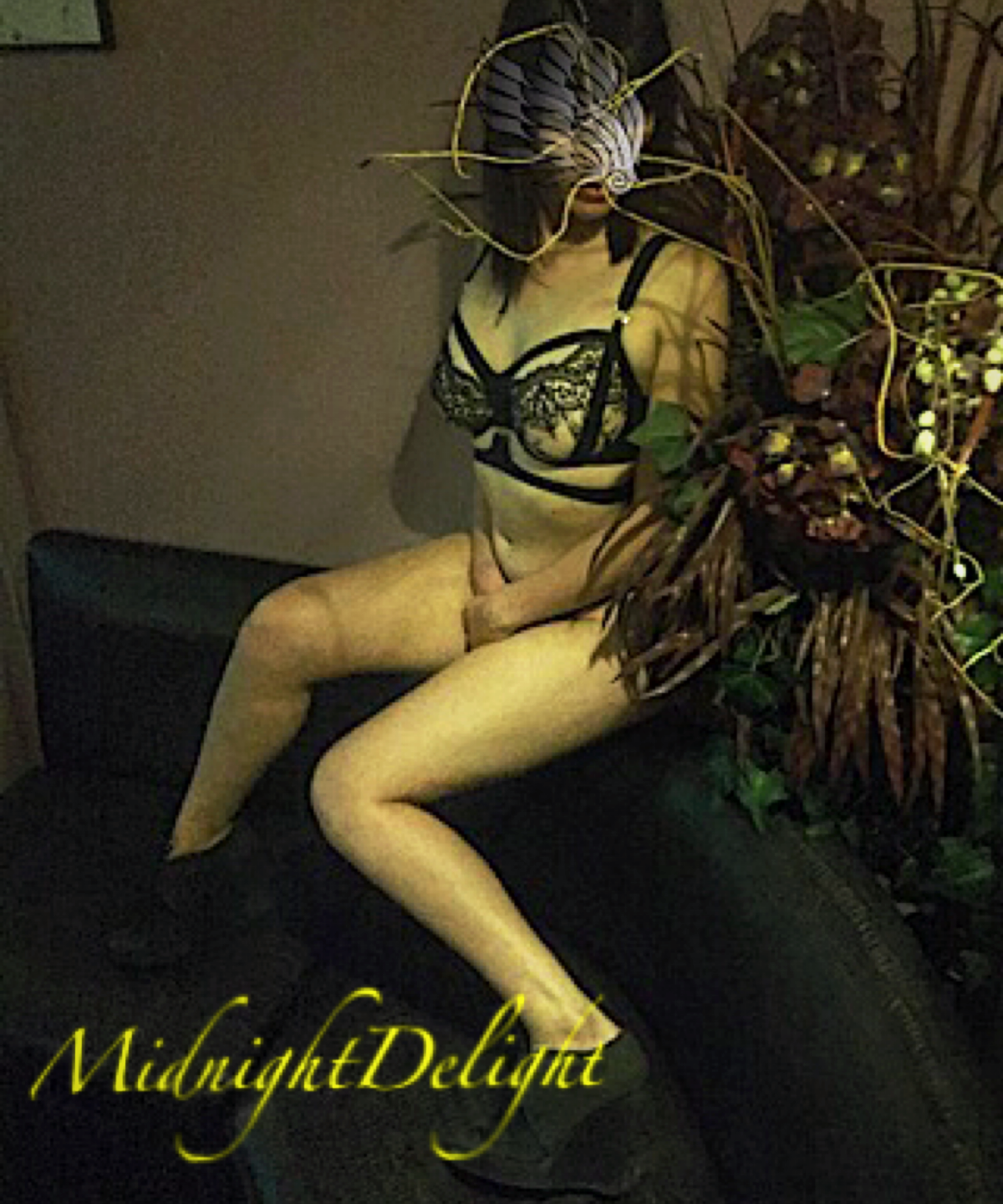 Midnight Delight- BEE
