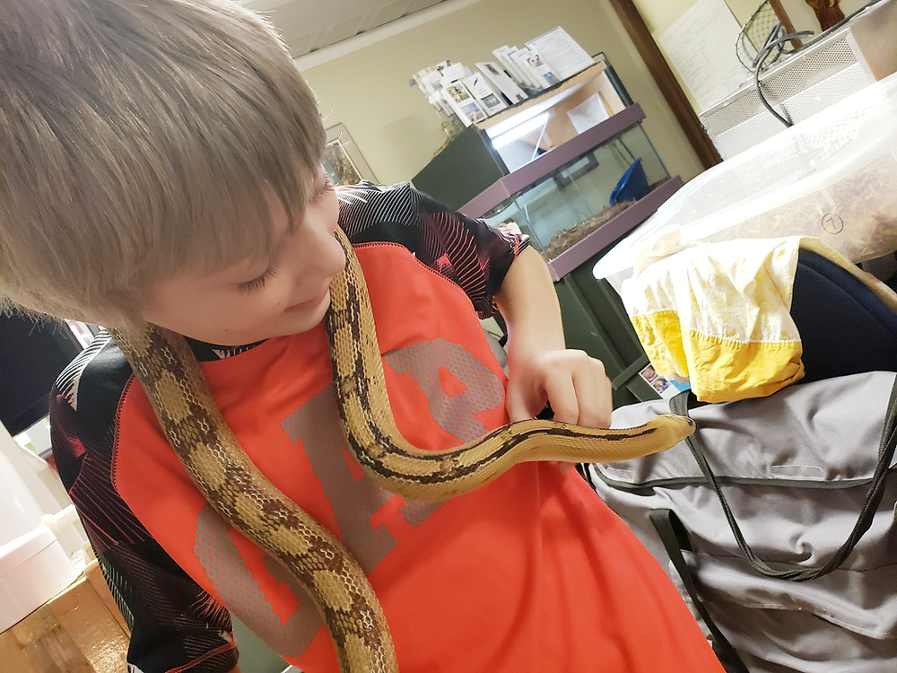 Fisher and Sandy, our favorite rat snake