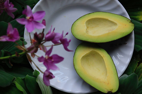 Salada de abacate deliciosa
