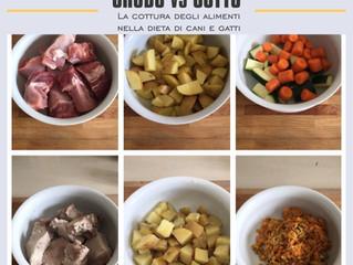 La cottura degli alimenti nella dieta di cani egatti: efficace e senza sprechi nutrizionali!