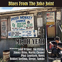 Blues From The Juke Joint.jpg