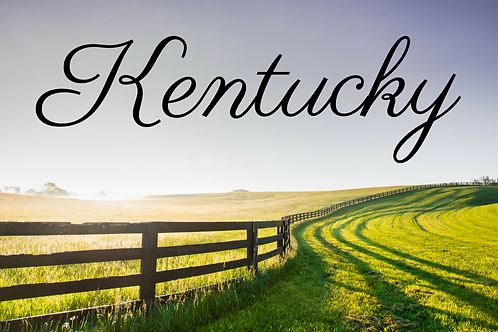 Kentucky 1/17 sets: 20 inserts Can't combine state, Read Below