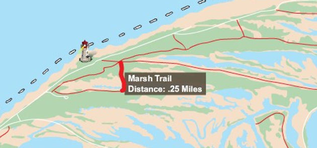 Marsh Trail.jpg