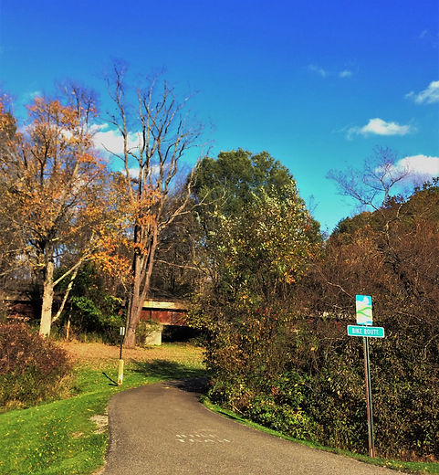 Queen City trail.jpg