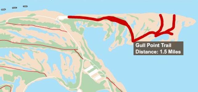 Gull Point Trail.jpg