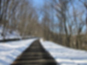 Trout Island Trail.jpg