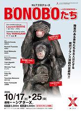 bonobo_omote.jpg