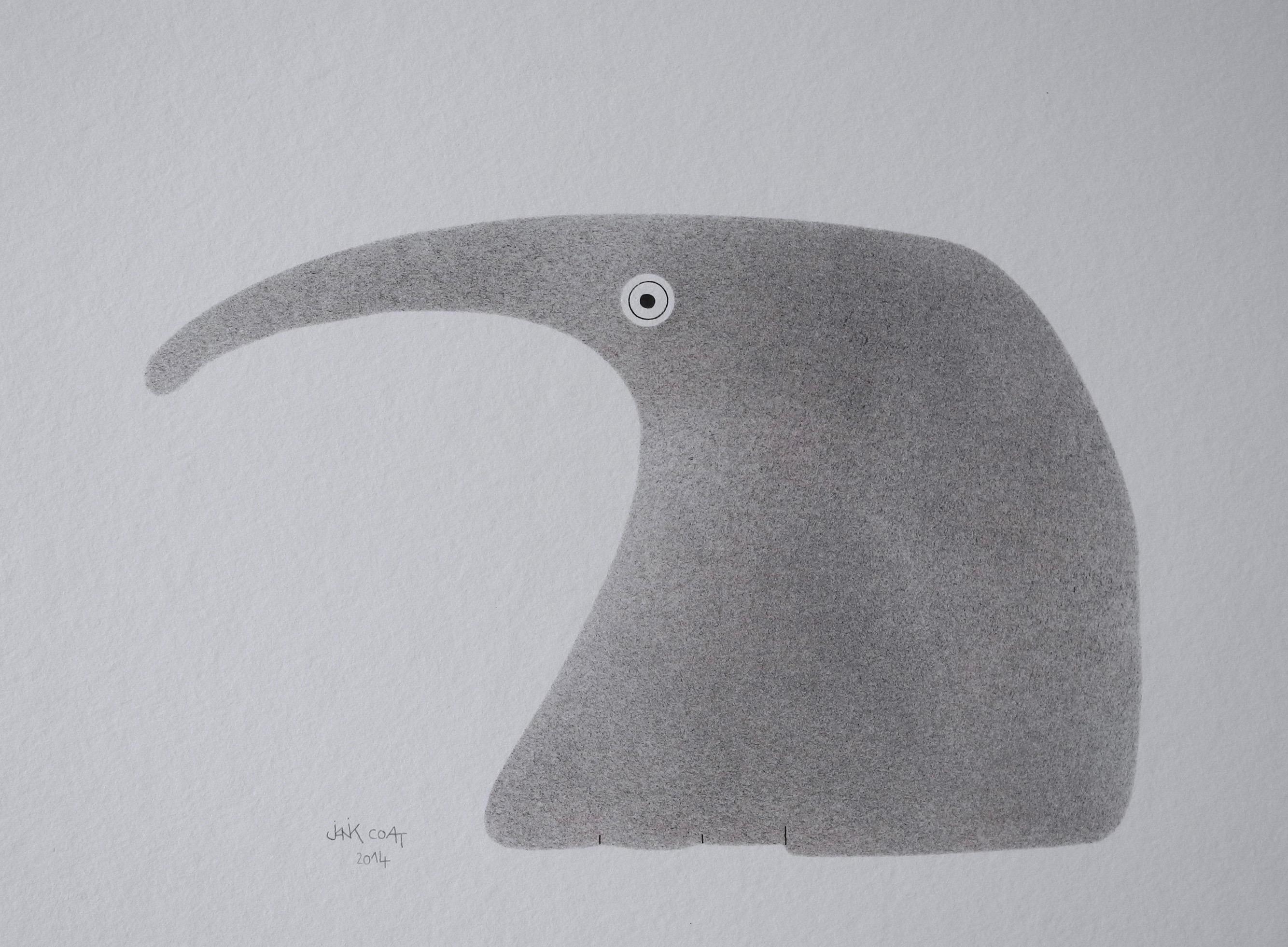 Tamanoir 2