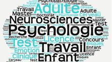 Aperçu de mes outils psychologiques pour traiter vos problématiques