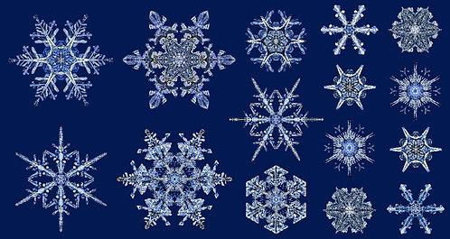 Artful Snowflake: Ice Crystal