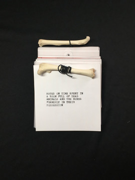 NOTES ON A TIME SPENT IN A ROOM FULL OF DEAD ANIMALS & THE BONES FORMERLY IN THEIR POSSESSICN