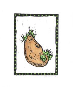 9.26.17+Potato+Color.jpg