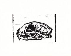 5.30.16+Robcat+Skull+Print+Black+-+Signe