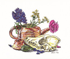 Teapot, Fig, Fox Skull, and Flowers