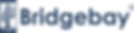 BBFI Logo.png