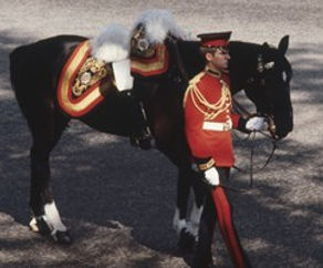 "Mountbatten's horse ""Dolly"" in the funeral possession -  with his boots reversed in the saddle ​"