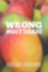 BestWrongDirectionCover.jpg