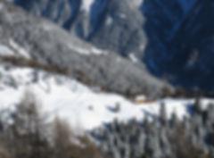 SkiParadise6.jpg