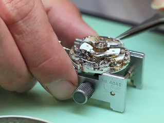 Diary of a Watchmaker.
