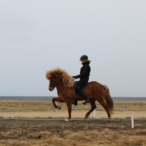 Elín Árnadóttir - Prýði f. Vík - STRÖNDIN