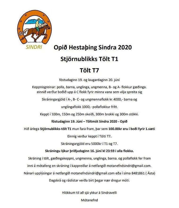 Hestaþing.JPG