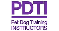 pdti_logo_purple_816x427.jpg
