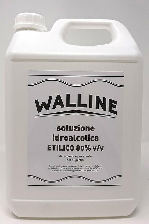 Tanica 5L Ricarica Scatola 4 pezzi SOLUZIONE IDROALCOLICA ETILICO 80% v/v