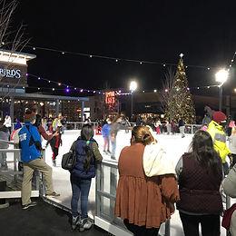 Stonebridge Ice Rink (VA)