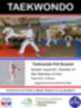 taekwondo flier fall session.jpg