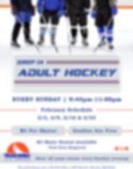 Waconia-Adult Hockey Drop-in(February).p