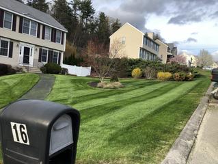 2020 Landscape Season Right Around the Corner!