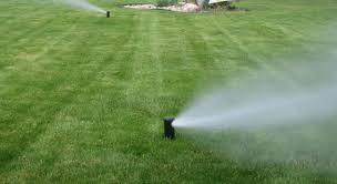 Sign Up For Irrigation Blowout!